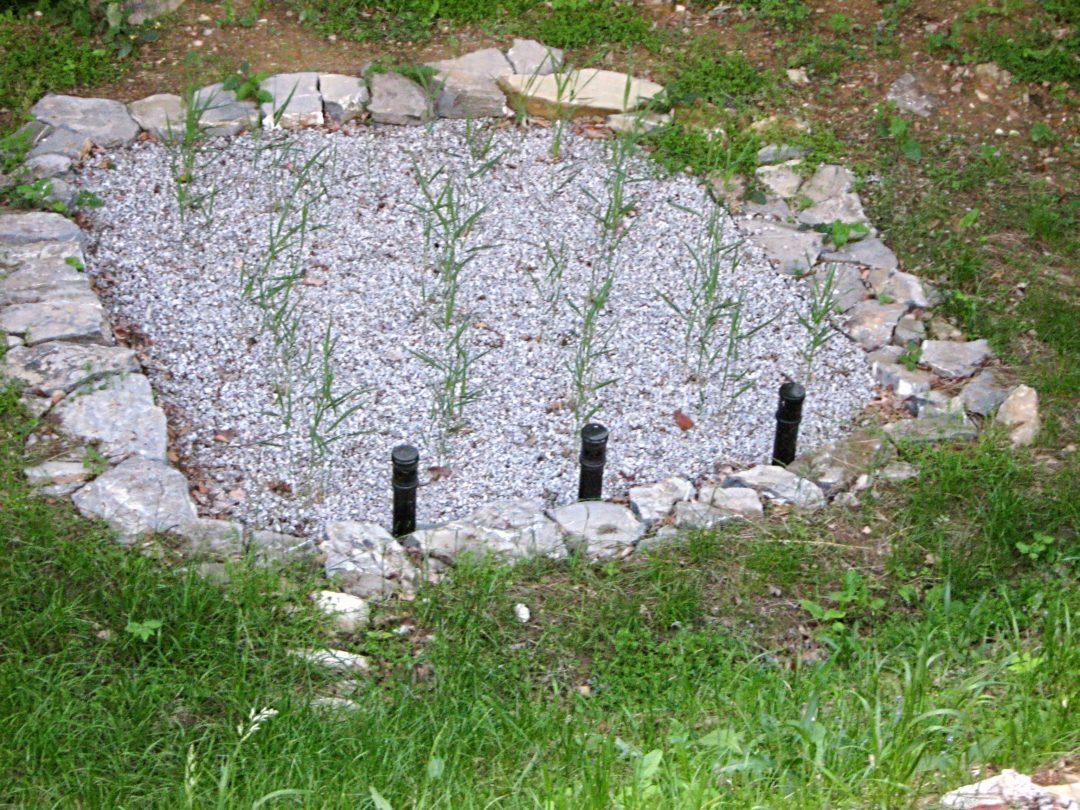 Mali Cirnik pri Šentjanžu, Šentrupert